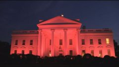 Reloaded twaddle – RT @fox5dc: White House goes PINK for Breast Cancer Awareness Month @Breastcance...