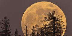 Reloaded twaddle – RT @Toronto: There's a #supermoon on the rise! Spot it in the sky, tonight &...